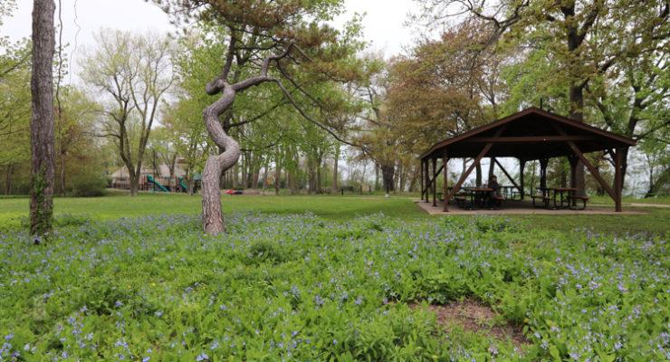 atEvanston.com | Evanston Parks
